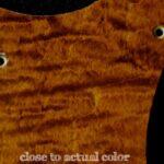 detail image brown figured strat maple pickguard 118