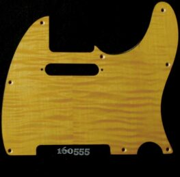gold figured tele maple pickguard 555