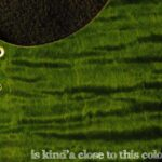 detail image 2 green curly tele maple pickguard 131