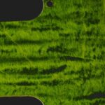 detail image lime curly strat pickguard 807a