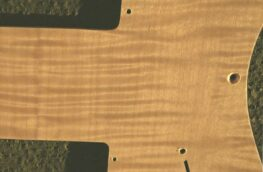 detail image natural thinline tele 717a