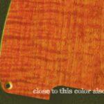 detail image orange figured tele scratchplate 129c
