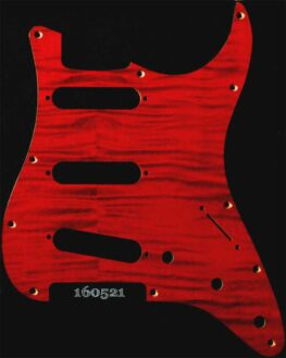 red figured strat maple pickguard 521