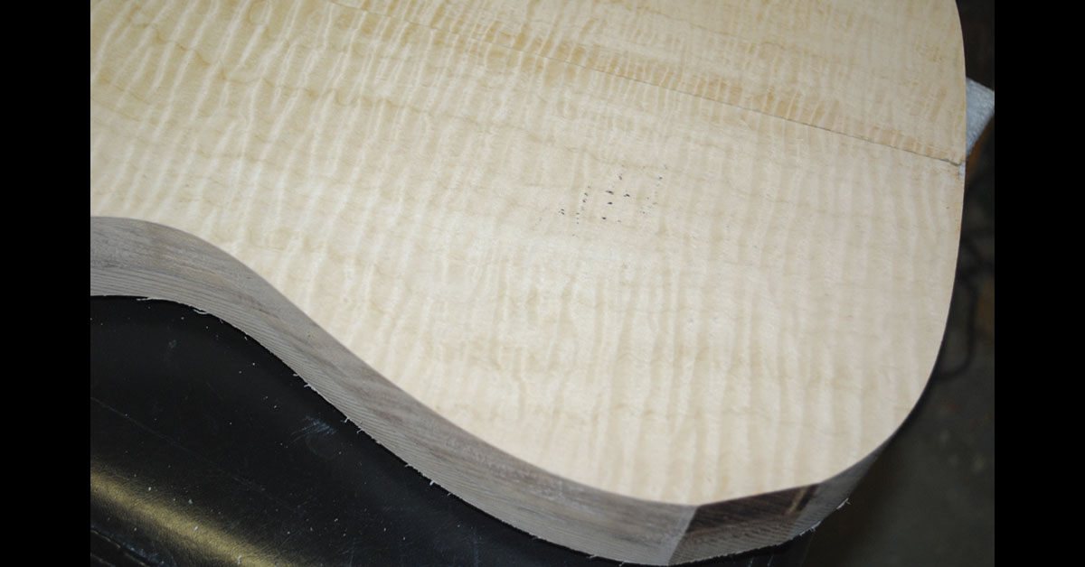 curly maple veneer for rear of tele body